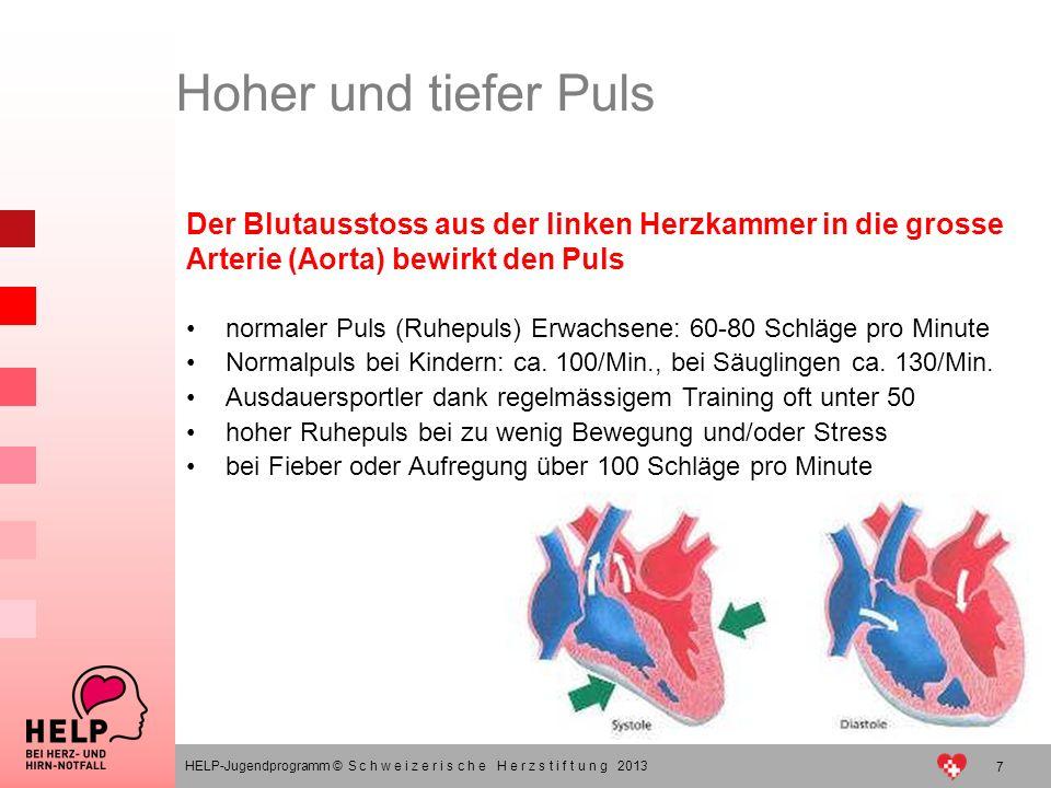 7 HELP-Jugendprogramm © S c h w e i z e r i s c h e H e r z s t i f t u n g 2013 Der Blutausstoss aus der linken Herzkammer in die grosse Arterie (Aor