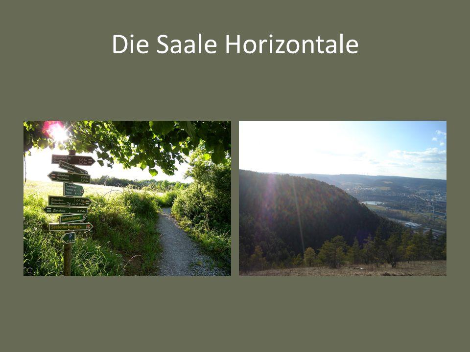 Die Saale Horizontale