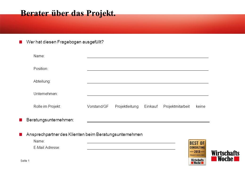 Seite 1 Berater über das Projekt. Wer hat diesen Fragebogen ausgefüllt.