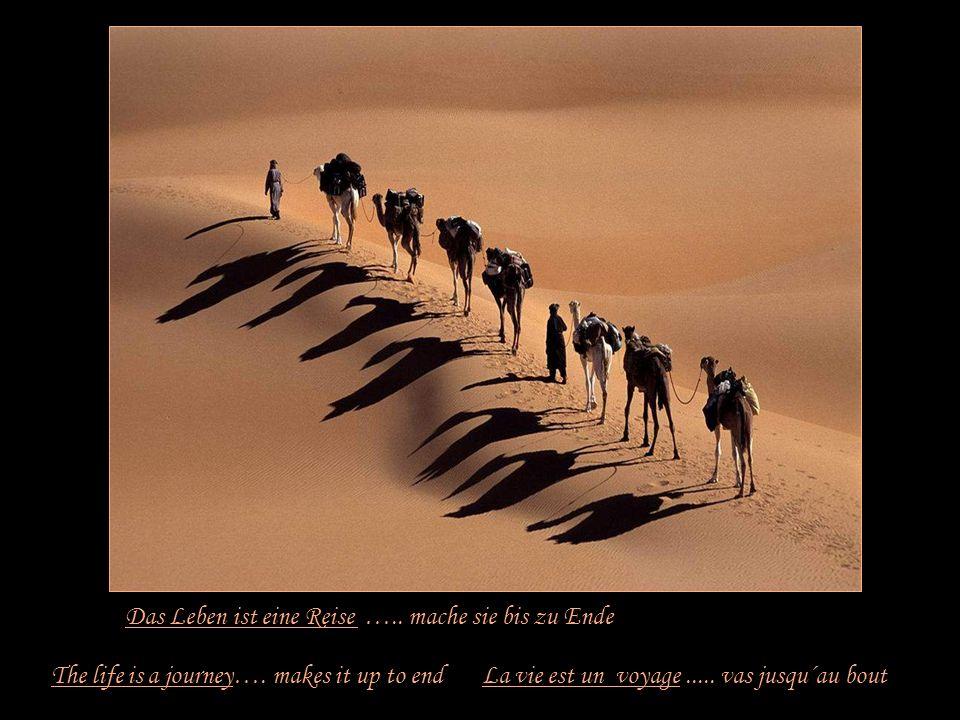 Das Leben ist eine Gelegenheit …… ergreife sie The life is an opportunity...... seizes it La vie est une chance...... saisis -la