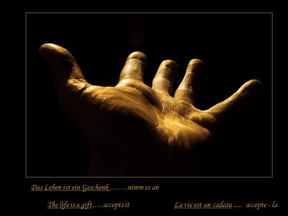 Das Leben ist ein Versprechen ….halte es The life is a promise….