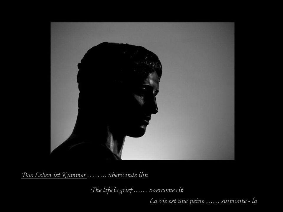 Das Leben ist Kummer ……..überwinde ihn The life is grief........