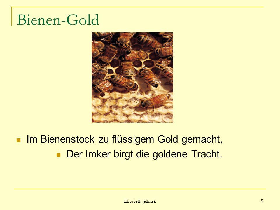 Elisabeth Jellinek 4 Bienen-Gold Den Nektar von vielen Blütentagen Fleißige Bienen zusammentragen