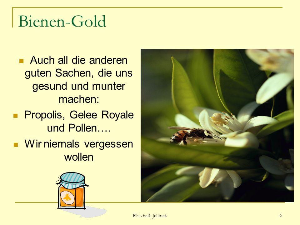Elisabeth Jellinek 5 Bienen-Gold Im Bienenstock zu flüssigem Gold gemacht, Der Imker birgt die goldene Tracht.