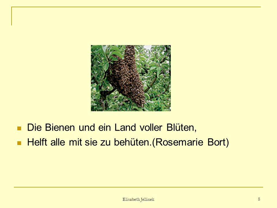 Elisabeth Jellinek 7 Bienen-Gold Die Heilkraft ist schon legendär.