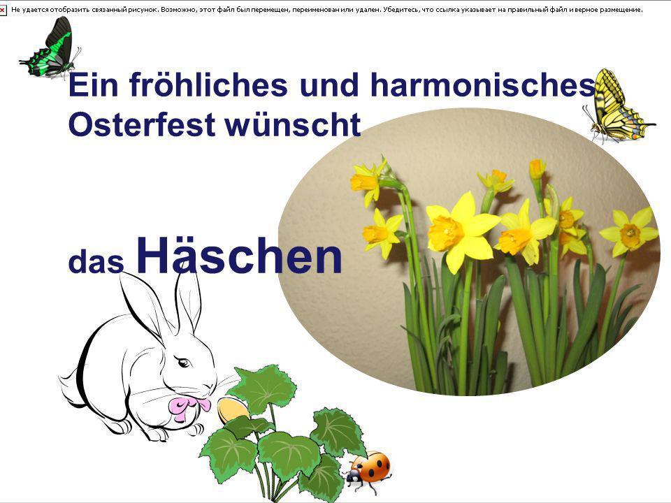 Ein fröhliches und harmonisches Osterfest wünscht das Häschen