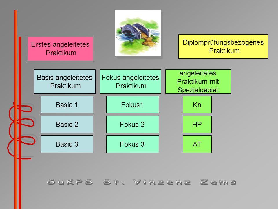 Basis angeleitetes Praktikum Basic 1 Basic 2 Basic 3 Fokus angeleitetes Praktikum Fokus 3 Fokus 2 Fokus1 angeleitetes Praktikum mit Spezialgebiet Diplomprüfungsbezogenes Praktikum Kn HP AT Erstes angeleitetes Praktikum