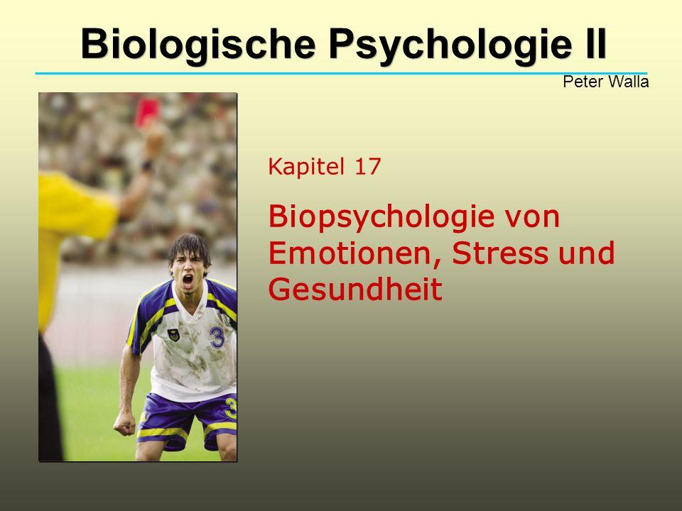 Kapitel 17 Biopsychologie von Emotionen, Stress und Gesundheit Biologische Psychologie II Peter Walla