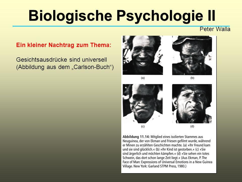 Biologische Psychologie II Peter Walla Ein kleiner Nachtrag zum Thema: Gesichtsausdrücke sind universell (Abbildung aus dem Carlson-Buch)