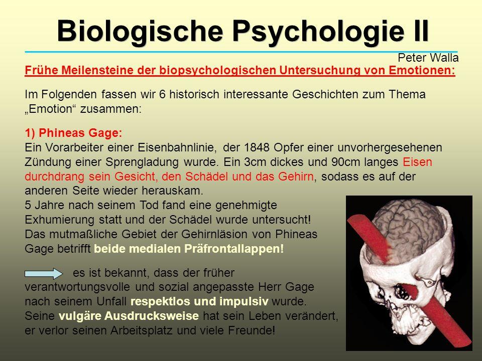 Biologische Psychologie II Peter Walla Frühe Meilensteine der biopsychologischen Untersuchung von Emotionen: Im Folgenden fassen wir 6 historisch inte