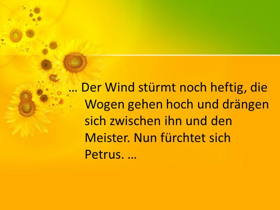 … Der Wind stürmt noch heftig, die Wogen gehen hoch und drängen sich zwischen ihn und den Meister. Nun fürchtet sich Petrus. …
