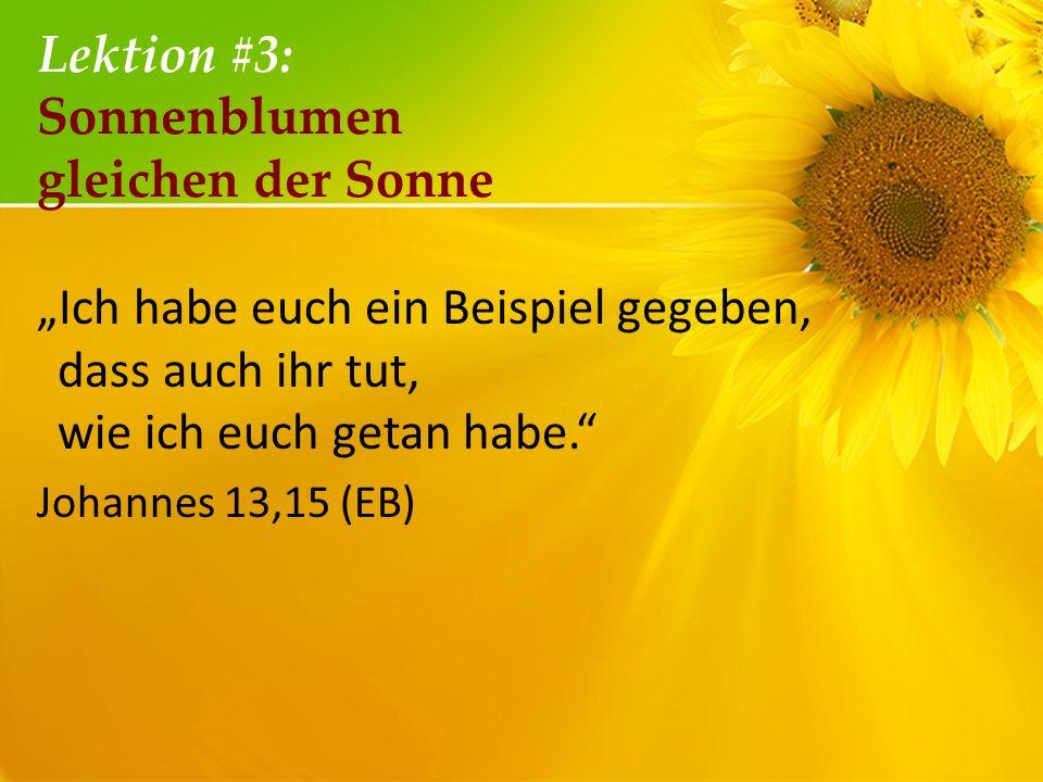 Lektion #3: Sonnenblumen gleichen der Sonne Ich habe euch ein Beispiel gegeben, dass auch ihr tut, wie ich euch getan habe. Johannes 13,15 (EB)