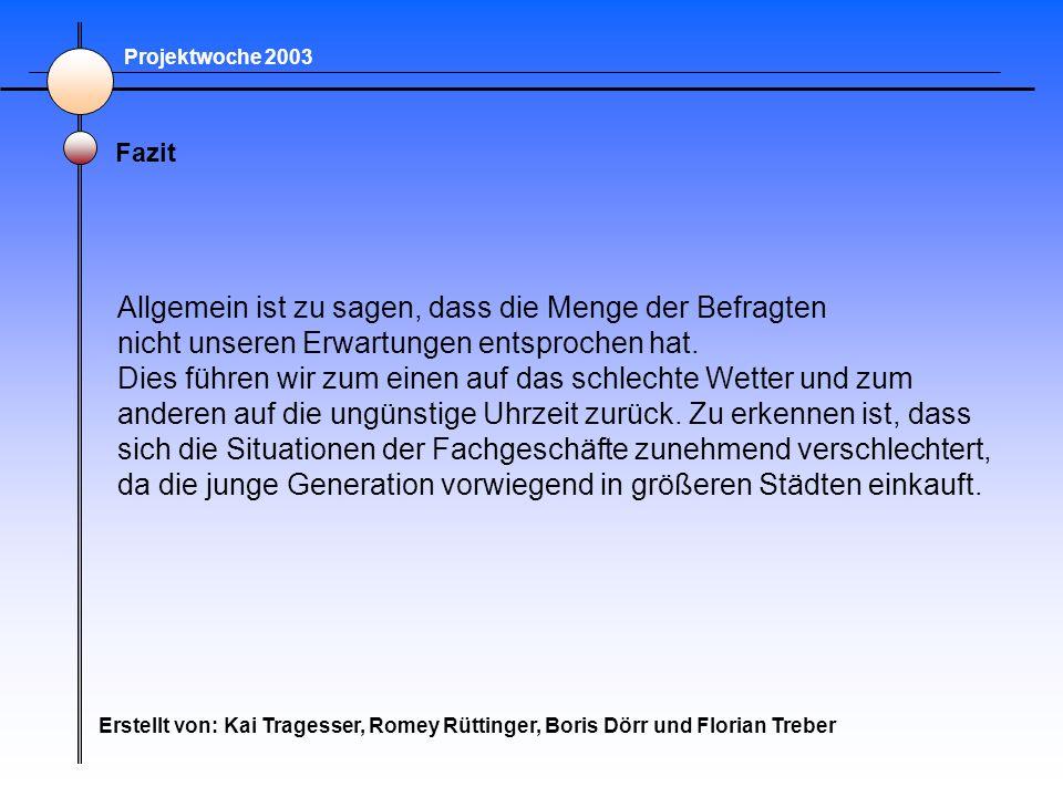 Projektwoche 2003 Fazit Erstellt von: Kai Tragesser, Romey Rüttinger, Boris Dörr und Florian Treber Allgemein ist zu sagen, dass die Menge der Befragt