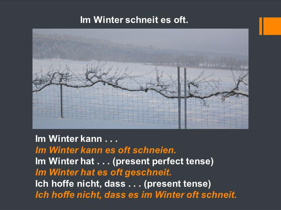 Im Winter schneit es oft. Im Winter kann... Im Winter kann es oft schneien.