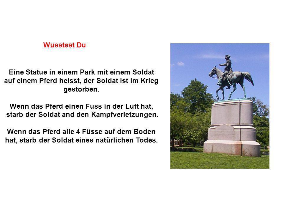 Eine Statue in einem Park mit einem Soldat auf einem Pferd heisst, der Soldat ist im Krieg gestorben. Wenn das Pferd einen Fuss in der Luft hat, starb