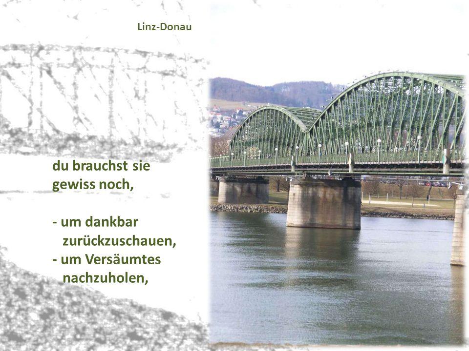 Ich wünsche dir, dass du die Brücke hinter dir nicht abbrichst Bad Goisern