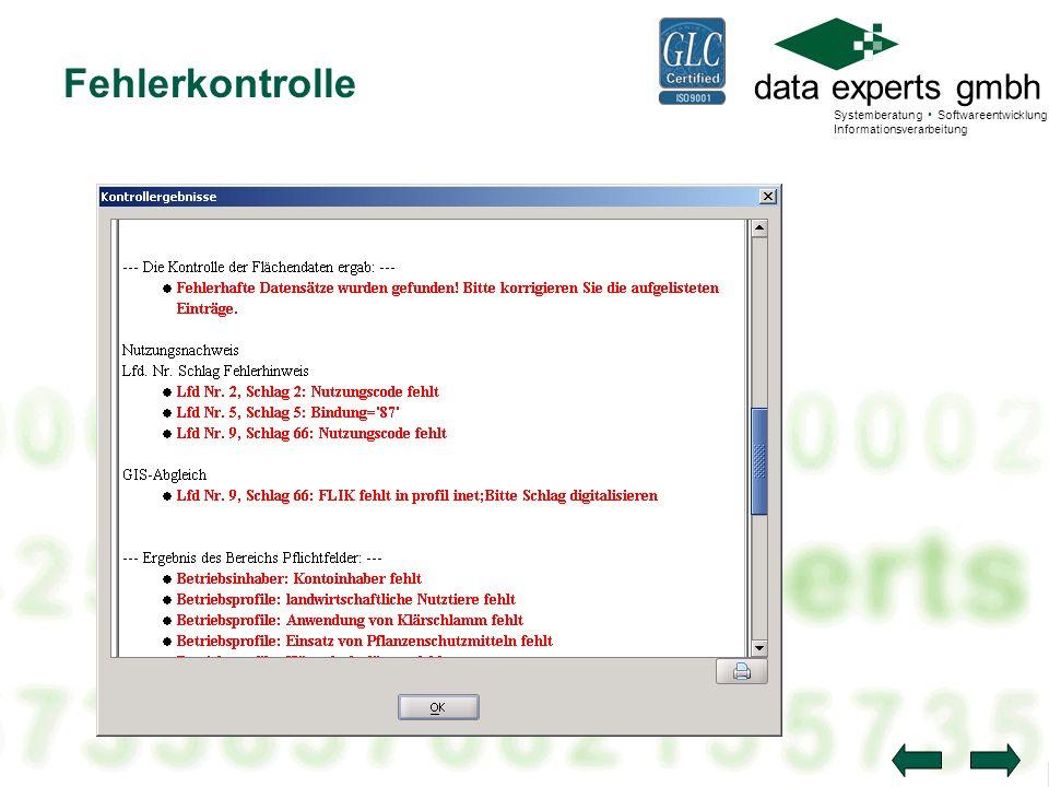 data experts gmbh Systemberatung Softwareentwicklung Informationsverarbeitung Fehlerkontrolle