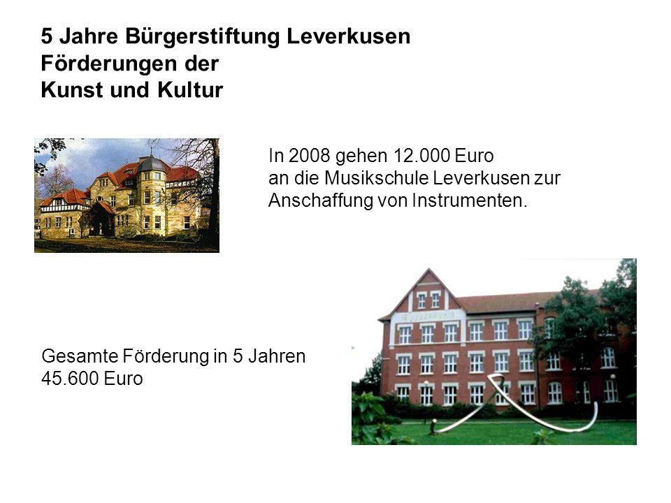 5 Jahre Bürgerstiftung Leverkusen Förderungen der Kunst und Kultur Gesamte Förderung in 5 Jahren 45.600 Euro In 2008 gehen 12.000 Euro an die Musikschule Leverkusen zur Anschaffung von Instrumenten.