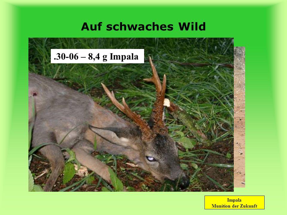 Impala Munition der Zukunft Zuverlässig! auf schwaches Wild auf starkes Wild auf wehrhaftes Wild auf jede Entfernung weltweit