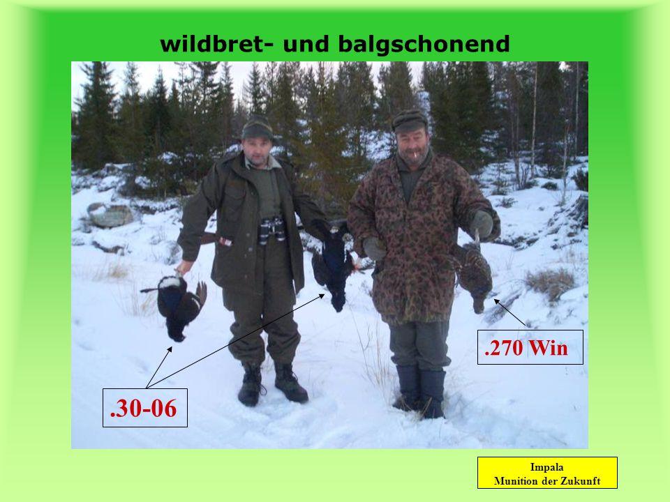 Impala Munition der Zukunft wildbret- und balgschonend Rehbock Einschuß.30-06Rehbock Ausschuß.30-06