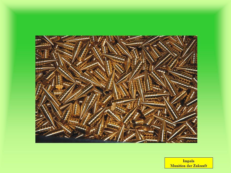 Impala Munition der Zukunft Auf jede Entfernung.30-06 – 8,4g Impala 285 m