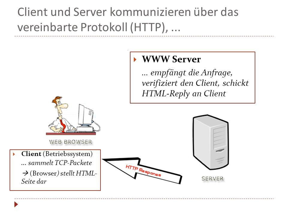 Client und Server kommunizieren über das vereinbarte Protokoll (HTTP),... Client (Betriebssystem)... sammelt TCP-Packete (Browser) stellt HTML- Seite