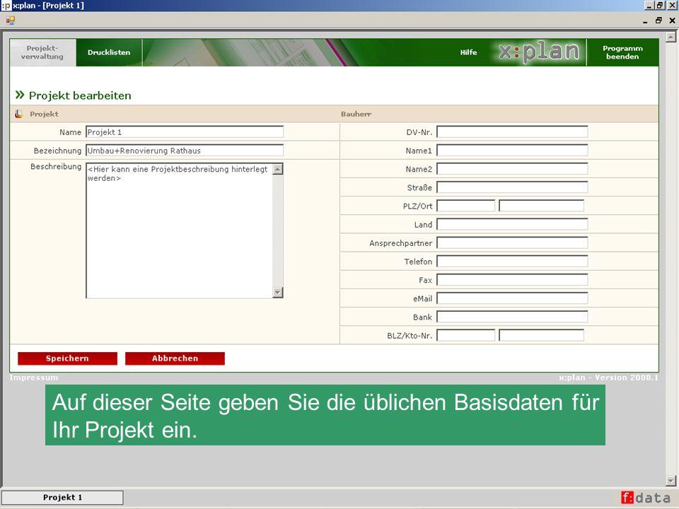 Auf dieser Seite geben Sie die üblichen Basisdaten für Ihr Projekt ein.