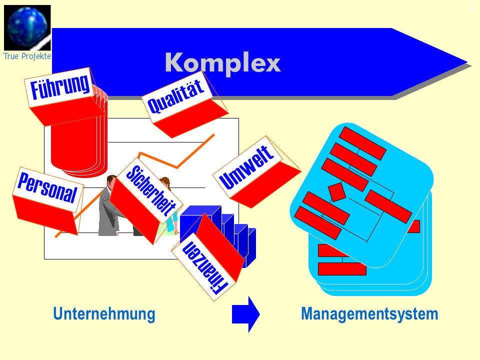 2 Komplex ManagementsystemUnternehmung