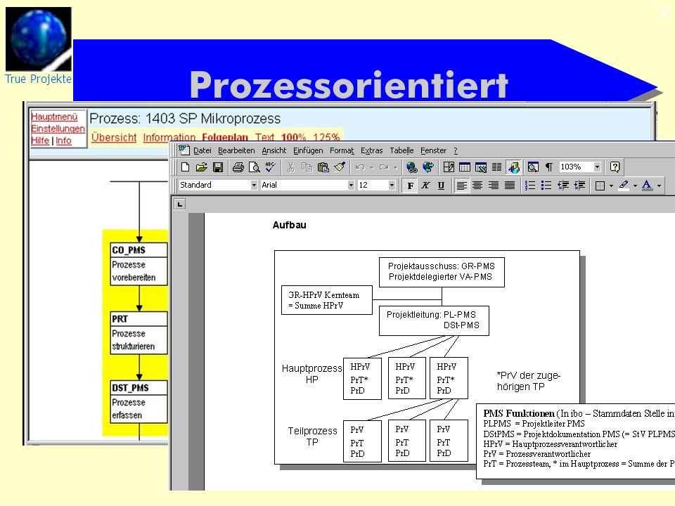 True Projekte 4 Prozessorientiert