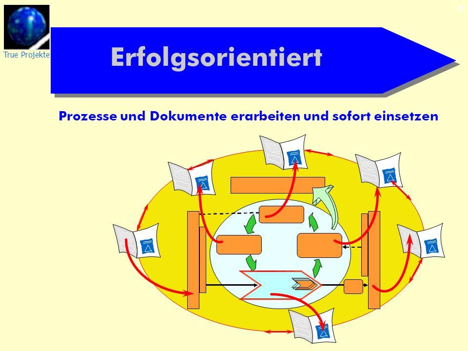 True Projekte 6 Erfolgsorientiert Prozesse und Dokumente erarbeiten und sofort einsetzen