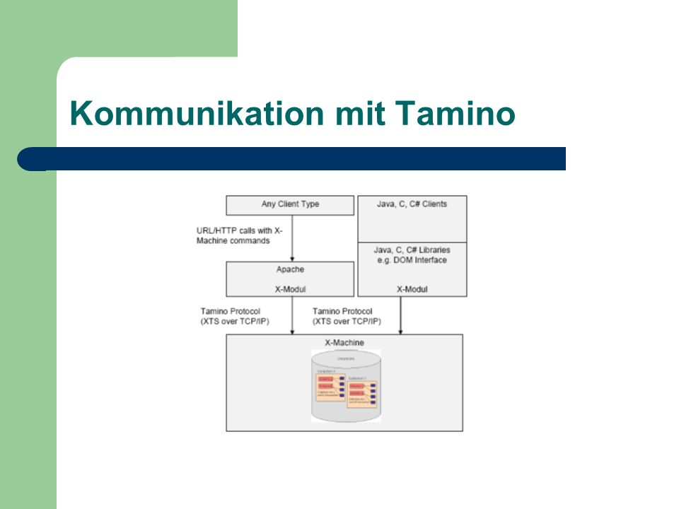Kommunikation mit Tamino