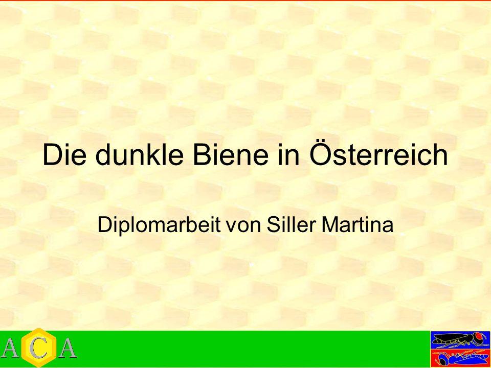 Die dunkle Biene in Österreich Diplomarbeit von Siller Martina