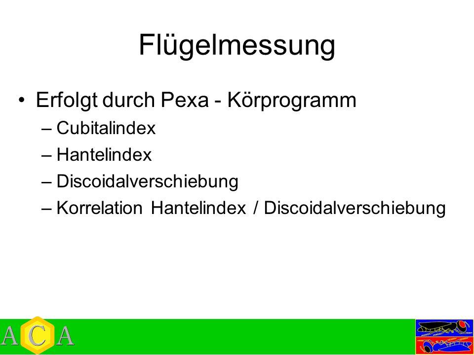 Flügelmessung Erfolgt durch Pexa - Körprogramm –Cubitalindex –Hantelindex –Discoidalverschiebung –Korrelation Hantelindex / Discoidalverschiebung