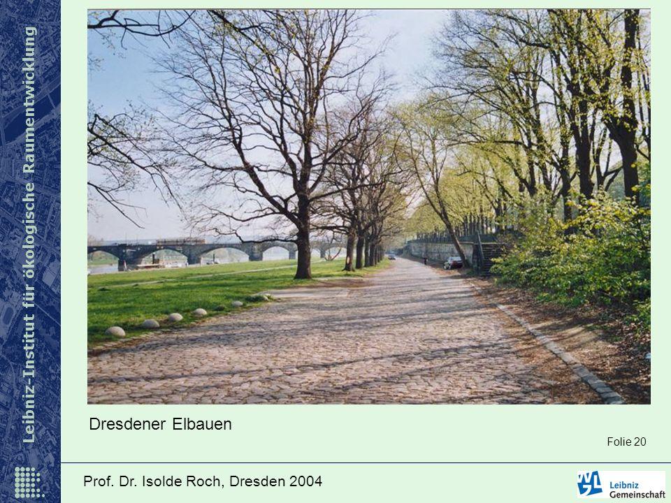 Leibniz-Institut für ökologische Raumentwicklung Prof. Dr. Isolde Roch, Dresden 2004 Dresdener Elbauen Folie 20
