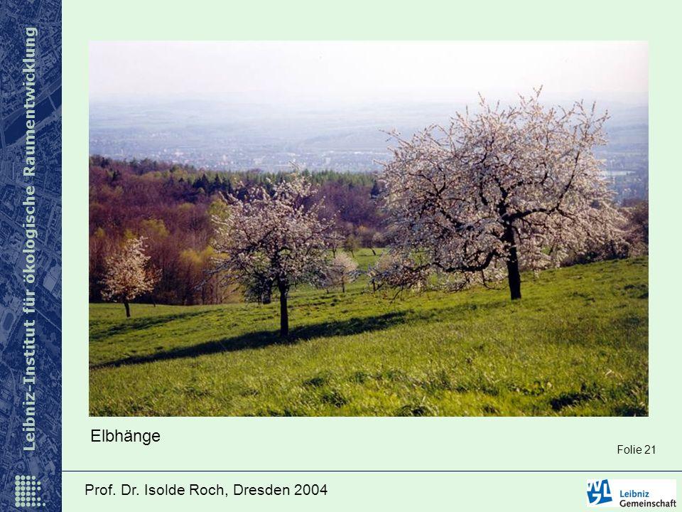 Leibniz-Institut für ökologische Raumentwicklung Prof. Dr. Isolde Roch, Dresden 2004 Elbhänge Folie 21
