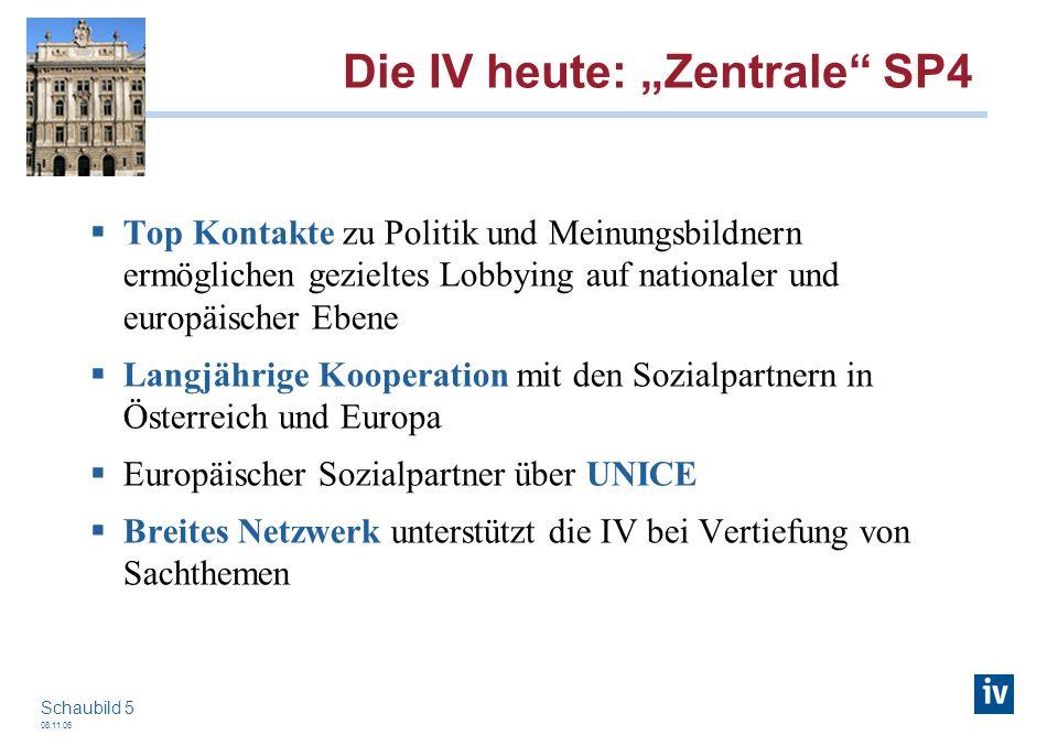 08.11.06 Schaubild 5 Die IV heute: Zentrale SP4 Top Kontakte zu Politik und Meinungsbildnern ermöglichen gezieltes Lobbying auf nationaler und europäi