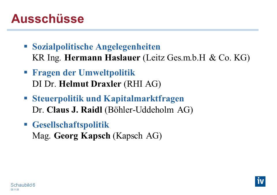08.11.06 Schaubild 6 Ausschüsse Sozialpolitische Angelegenheiten KR Ing. Hermann Haslauer (Leitz Ges.m.b.H & Co. KG) Fragen der Umweltpolitik DI Dr. H