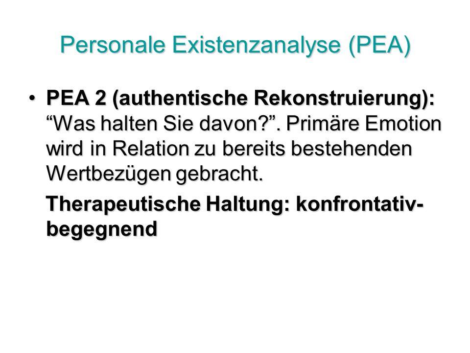 Personale Existenzanalyse (PEA) PEA 2 (authentische Rekonstruierung): Was halten Sie davon?.