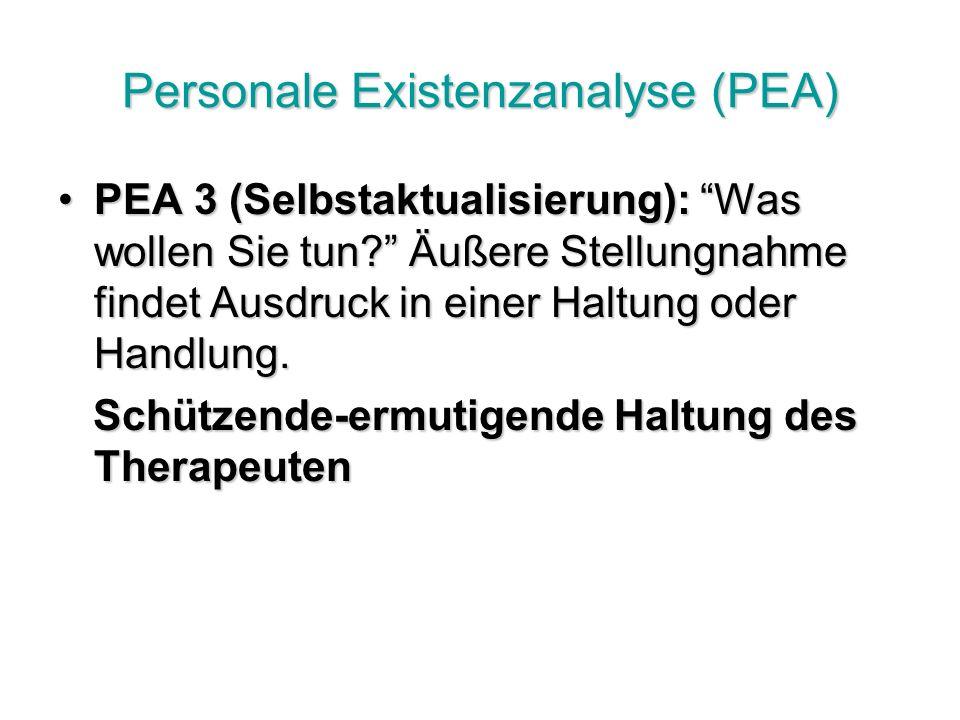 Personale Existenzanalyse (PEA) PEA 3 (Selbstaktualisierung): Was wollen Sie tun.