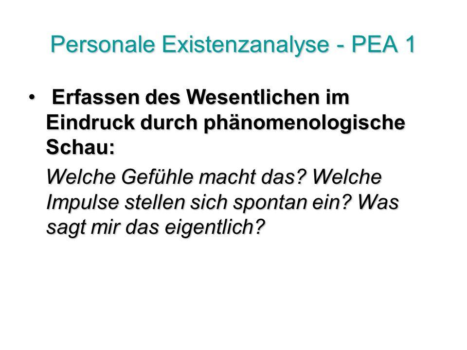 Personale Existenzanalyse - PEA 1 Erfassen des Wesentlichen im Eindruck durch phänomenologische Schau: Erfassen des Wesentlichen im Eindruck durch phänomenologische Schau: Welche Gefühle macht das.