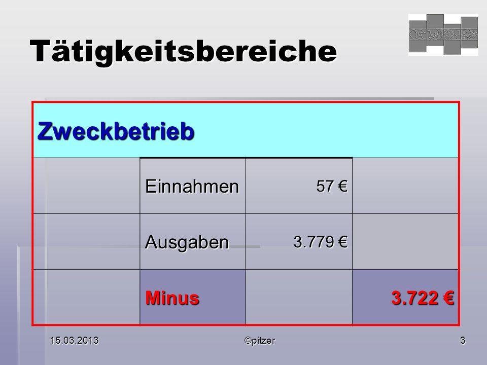 15.03.2013©pitzer3 Tätigkeitsbereiche Zweckbetrieb Einnahmen 57 57 Ausgaben 3.779 3.779 Minus 3.722 3.722