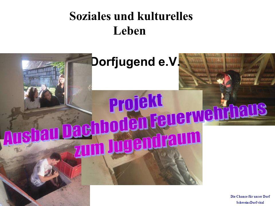 Dorfjugend e.V. Soziales und kulturelles Leben Die Chance für unser Dorf SchweinsDorf vital