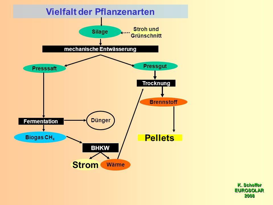 K. Scheffer EUROSOLAR 2008 K. Scheffer EUROSOLAR 2008 mechanische Entwässerung Presssaft Pressgut BHKW Dünger Wärme Strom Fermentation Biogas CH 4 Vie
