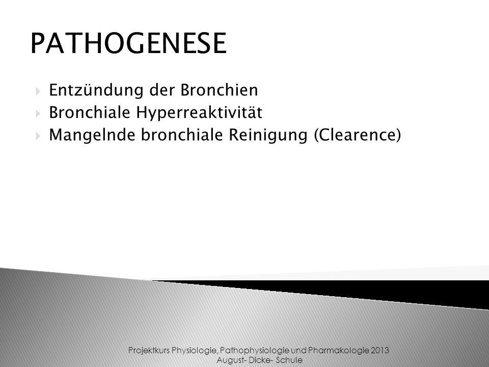 Entzündung der Bronchien Bronchiale Hyperreaktivität Mangelnde bronchiale Reinigung (Clearence) PATHOGENESE Projektkurs Physiologie, Pathophysiologie