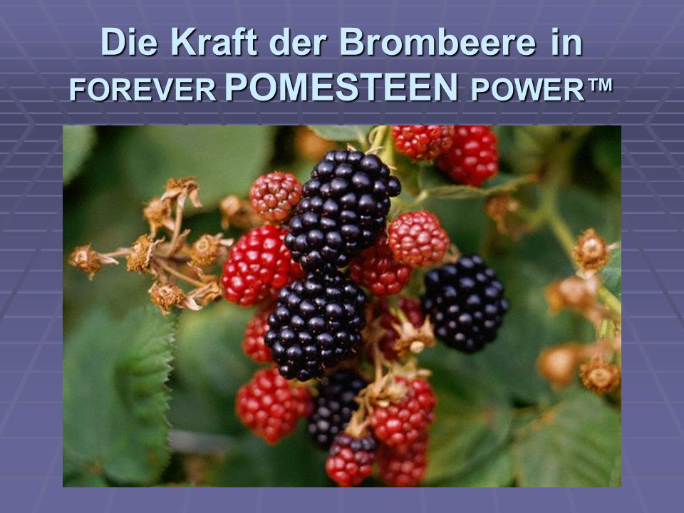 Die Kraft der Himbeere in FOREVER POMESTEEN POWER