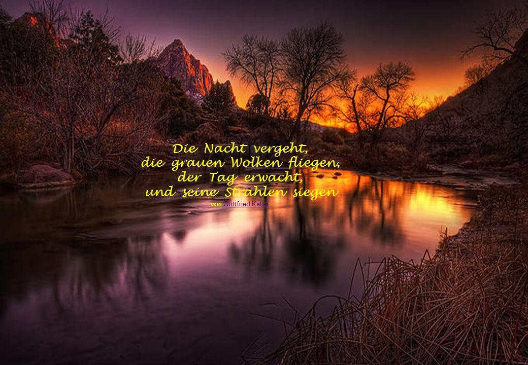 Am Morgen sehr früh ist viel zu spät für das, was man am Abend vorher hätte tun sollen. von Johann Heinrich Pestalozzi Johann Heinrich PestalozziJohan