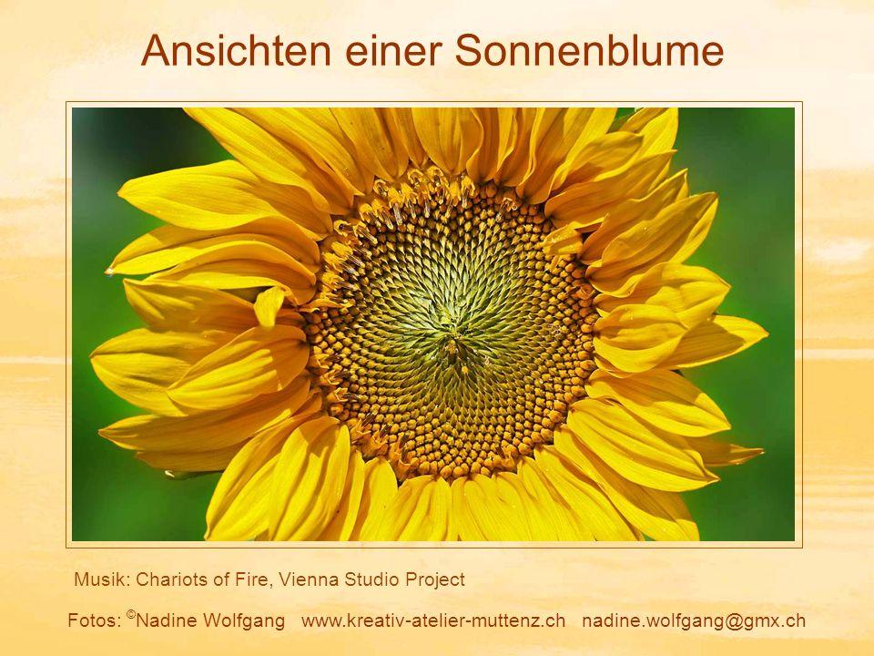 Musik: Chariots of Fire, Vienna Studio Project Fotos: © Nadine Wolfgang www.kreativ-atelier-muttenz.ch nadine.wolfgang@gmx.ch Ansichten einer Sonnenblume