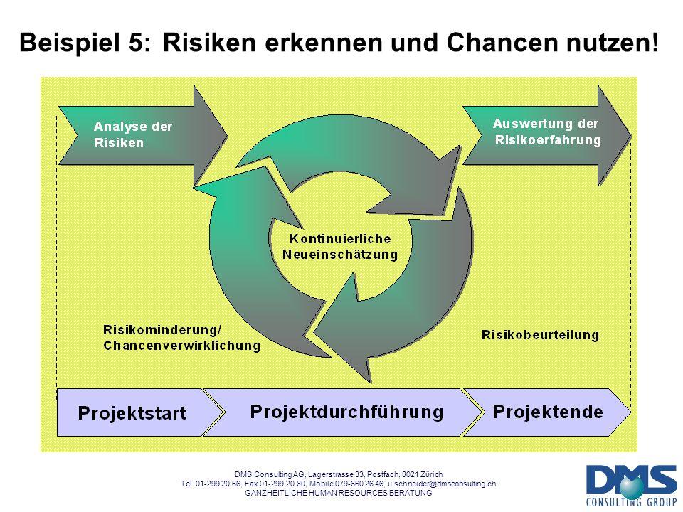 DMS Consulting AG, Lagerstrasse 33, Postfach, 8021 Zürich Tel. 01-299 20 66, Fax 01-299 20 80, Mobile 079-660 26 46, u.schneider@dmsconsulting.ch GANZ