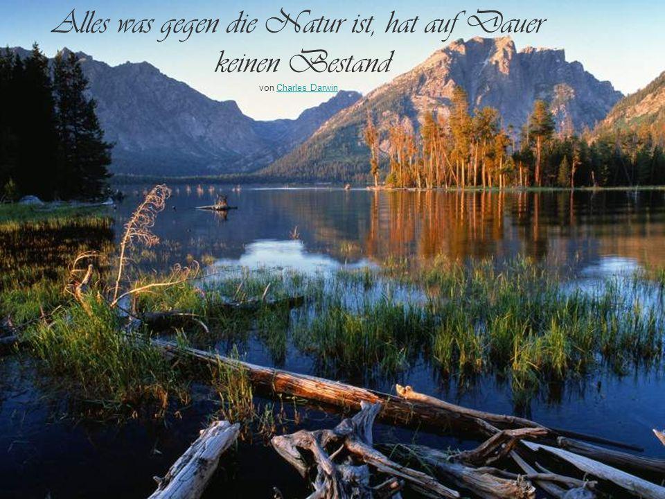 Die Natur schafft immer von dem, was möglich ist, das Beste. von Jean PaulJean Paul