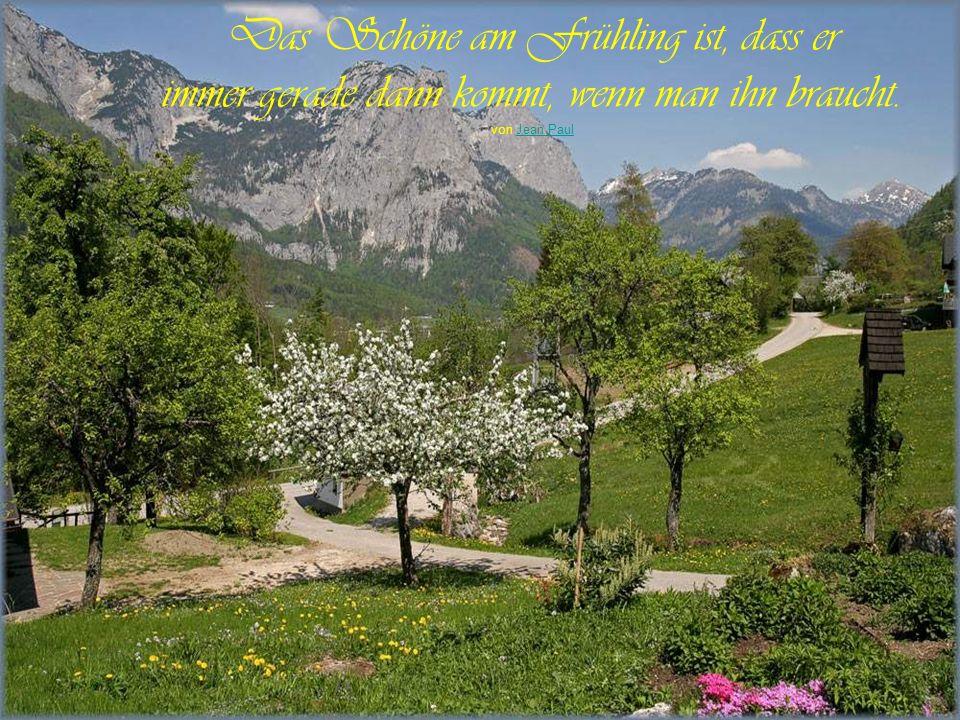 Geh in den Garten und höre auf die Stille zwischen den Geräuschen: Dies ist die wahre Musik der Natur. japanische Weisheit